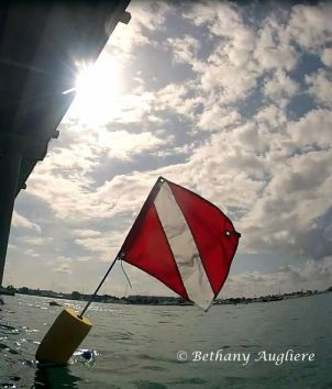 diving the bridge requires a dive flag, alerting boaters to your presence.
